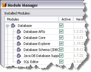 Module manager dialogue in the NetBeans™ IDE 5.5